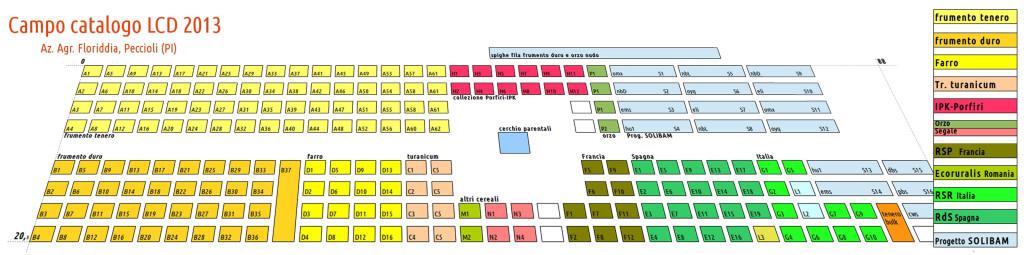 http://cultivatediversity.org/wp-content/uploads/2013/03/Campa-catalogo-LCD-2013-1024x255.jpg